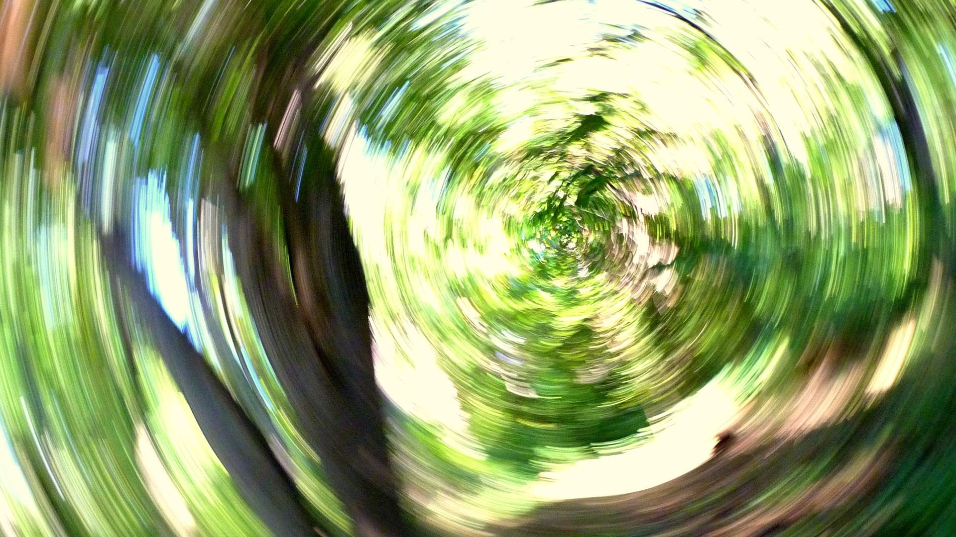 Stop Spinning Dizziness And Balance Disorders Westwood Ent